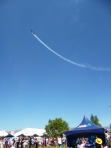 Aerial acrobatics over the Marlborough Food and Wine Festival