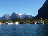 A perfect day for kayaking in Milford Sound