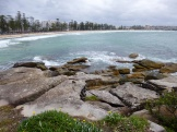 The scenic walk along the coast from Manly Beach